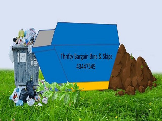 Skip Bins vs Rubbish Removal